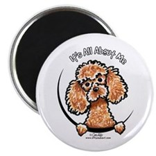 """Apricot Poodle IAAM 2.25"""" Magnet (10 pack)"""