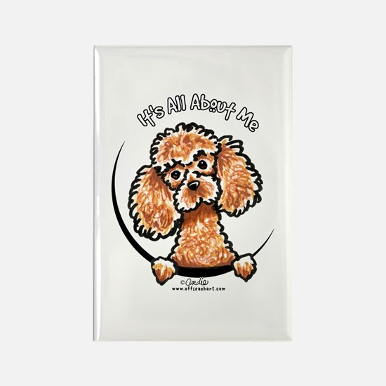 Apricot Poodle IAAM Rectangle Magnet