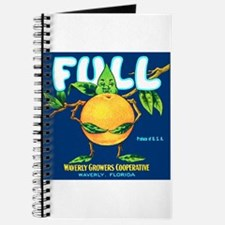 Cool Vintage florida Journal