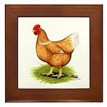 Golden Sex-link Hen Framed Tile