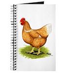 Golden Sex-link Hen Journal