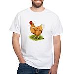 Golden Sex-link Hen White T-Shirt