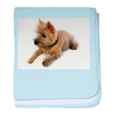Cairn Terrier Puppy baby blanket