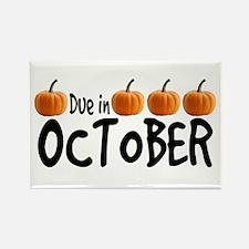 Due in October - Pumpkins Rectangle Magnet