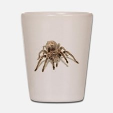 Tarantula Shot Glass