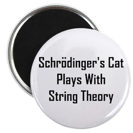 Schrodinger's Cat Plays Magnet