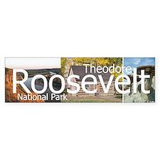 ABH Theodore Roosevelt NP Bumper Sticker