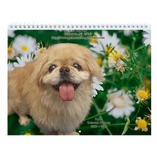 Prni Pekingese Rescue 12 Page Wall Calendar