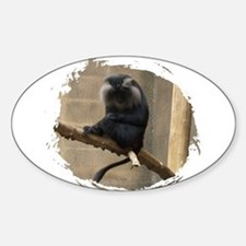 Lion-tailed macaque Sticker (Oval)