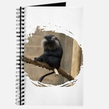 Lion-tailed macaque Journal
