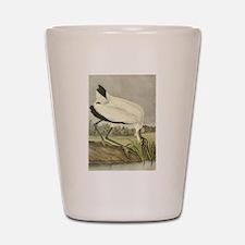 Wood Stork Shot Glass