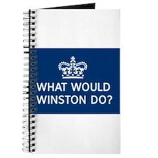 Unique Winston Journal