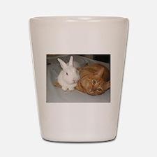 Bunny_Cat Shot Glass