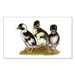 Emery Penciled Runner Ducklin Sticker (Rectangle 5
