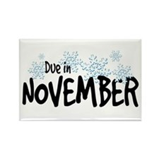 Due in November - Snowflakes Rectangle Magnet