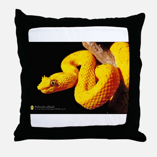 Funny Snake Throw Pillow