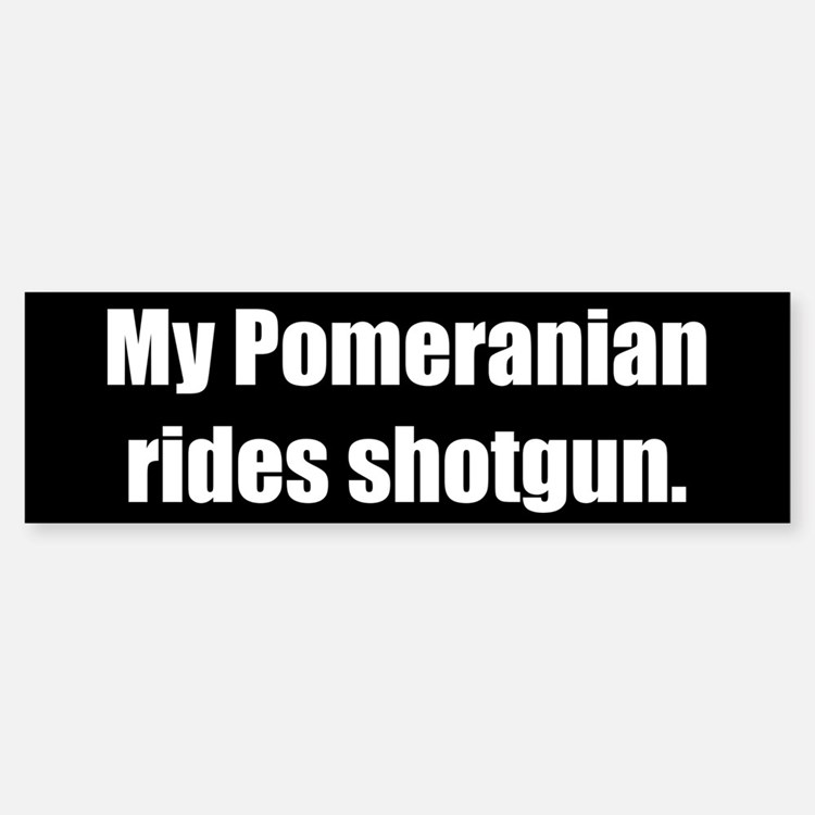 My Pomeranian rides shotgun (Bumper Sticker)