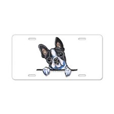 Curious Boston Aluminum License Plate