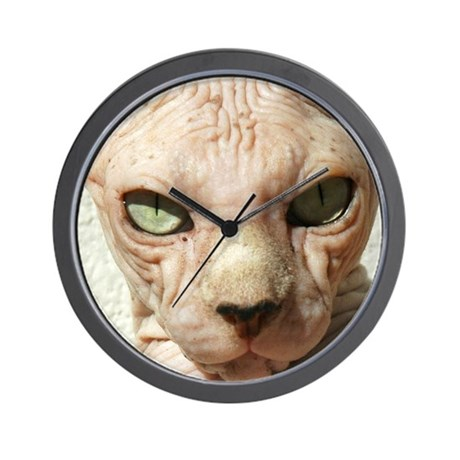 Hairless Sphynx Cat Wall Clock