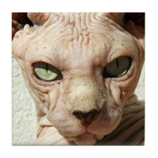 Funny Hairless cat Tile Coaster