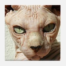 Cool Egyptian cat Tile Coaster