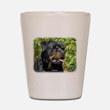 Rottweiler 9R047D-052 Shot Glass