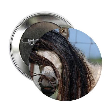 """Peek-a-Boo Colt 2.25"""" Button (100 pack)"""