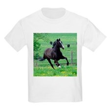 Walker in Spring T-Shirt