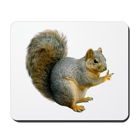 Peace Squirrel Mousepad