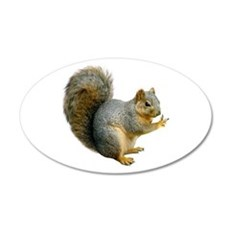 Peace Squirrel 22x14 Oval Wall Peel