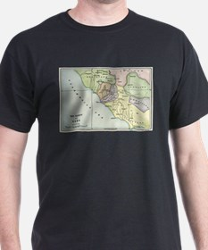 Ancient Rome and Environs (co T-Shirt