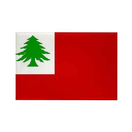 New England Flag Rectangle Magnet