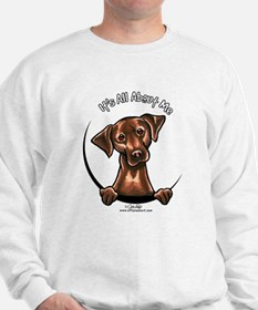 Chocolate Lab IAAM Jumper