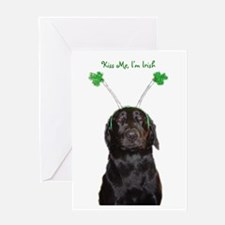 Irish lab Greeting Card