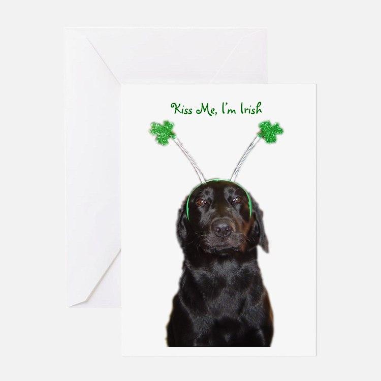 Irish lab Greeting Card