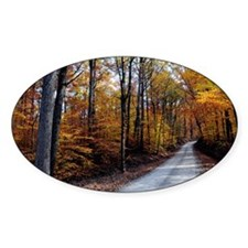 Autumn Road Decal