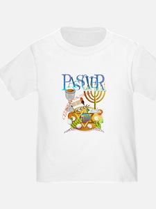 Passover Seder T