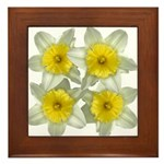 White daffodils Framed Tile