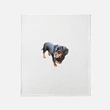 'Lily Dachshund Dog' Throw Blanket