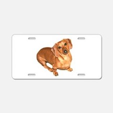 Tiger Doxie Aluminum License Plate