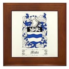Mole Framed Tile