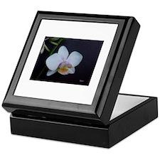 Orchid Keepsake Box