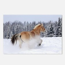 Unique Fjord horse Postcards (Package of 8)