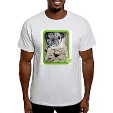Spring Chewie Ash Grey T-Shirt