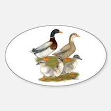 Saxony Duck Family Decal