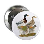 """Saxony Duck Family 2.25"""" Button"""