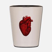 Vintage Anatomical Human Heart Shot Glass