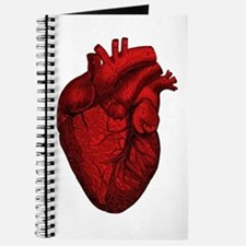 Vintage Anatomical Human Heart Journal