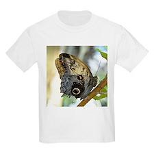 Owl Butterfly T-Shirt