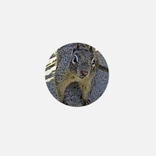 Ground Squirrel Mini Button